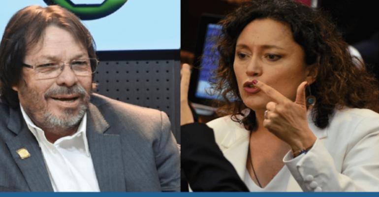 Congreso virtual: el debate por su legalidad 2