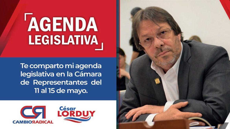 Agenda en la Cámara de Cesar Lorduy