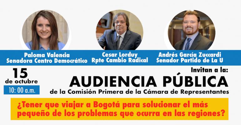 Audiencias pública (descentralización)