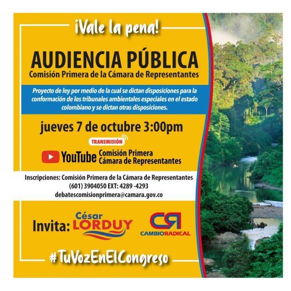Audiencia Pública - Cesar Lorduy